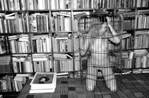What a nice place for a cage! But how frustrating to not be able to reach the books.